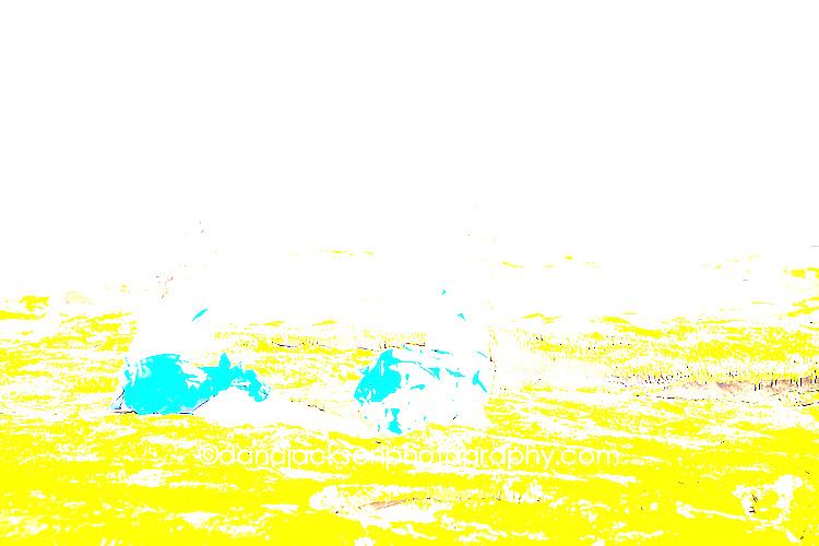 beach_mermaid_kids_photo_04.jpg