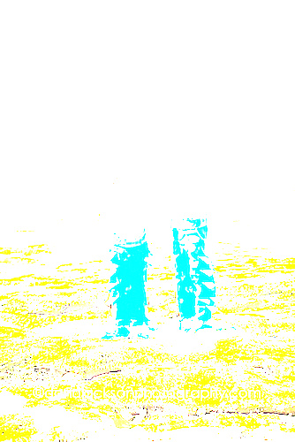beach_mermaid_kids_photo_09.jpg